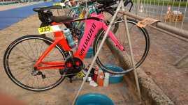 Estadual de Triatlhon - Rio Triathlon (365)